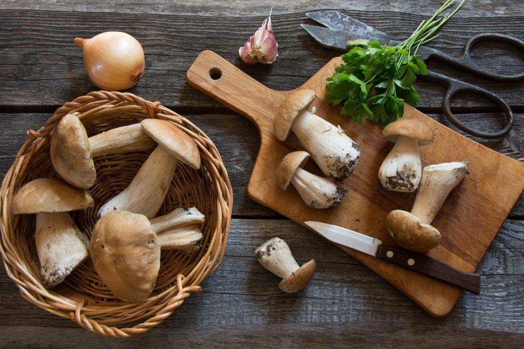 KoBBieciarnia - borowik szlachetny - grzyby - kuchnia